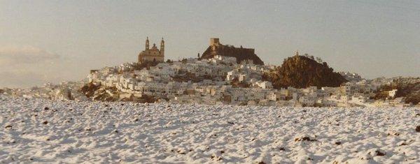Olvera-Nieve.jpg