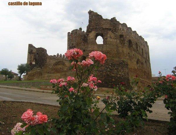 Castillo-de-laguna