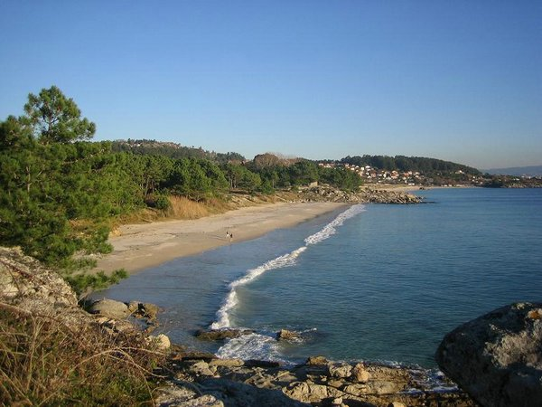 Playa-Vino