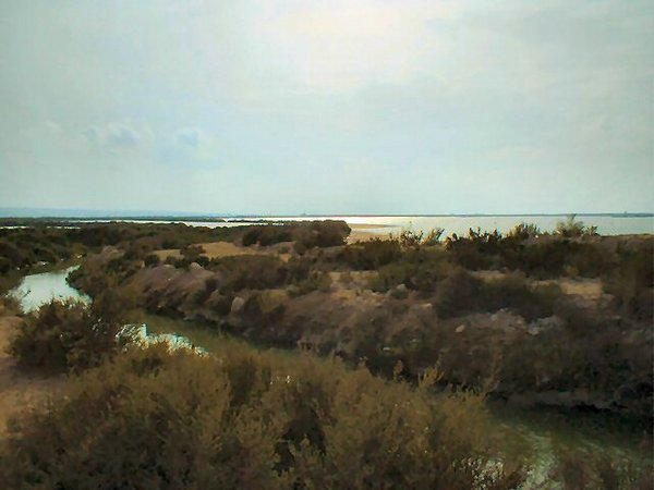 Salinas de Santa Pola, Alicante